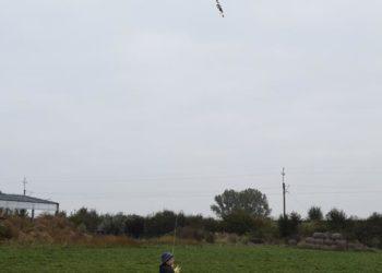 Zabawa z latawcami