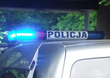 Policja ujęła złodziei