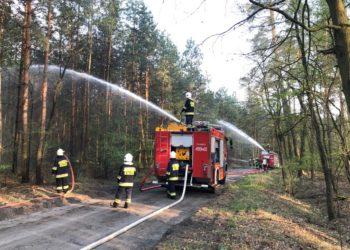 Strażacy ćwiczyli w lesie