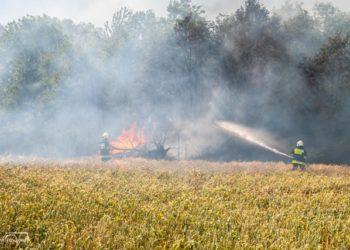 Pożar rozprzestrzeniał się w kierunku lasu