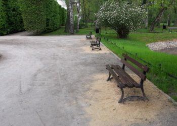 Wiosenna odnowa parku