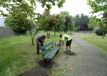 Wymiana ławek w Kobylinie