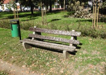 Park miejski - miejsce spotkań mieszkańców czy ptaków?