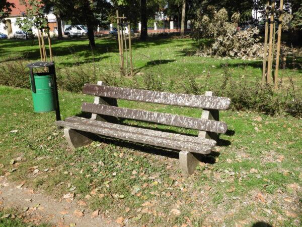 Park miejski – miejsce spotkań mieszkańców czy ptaków?